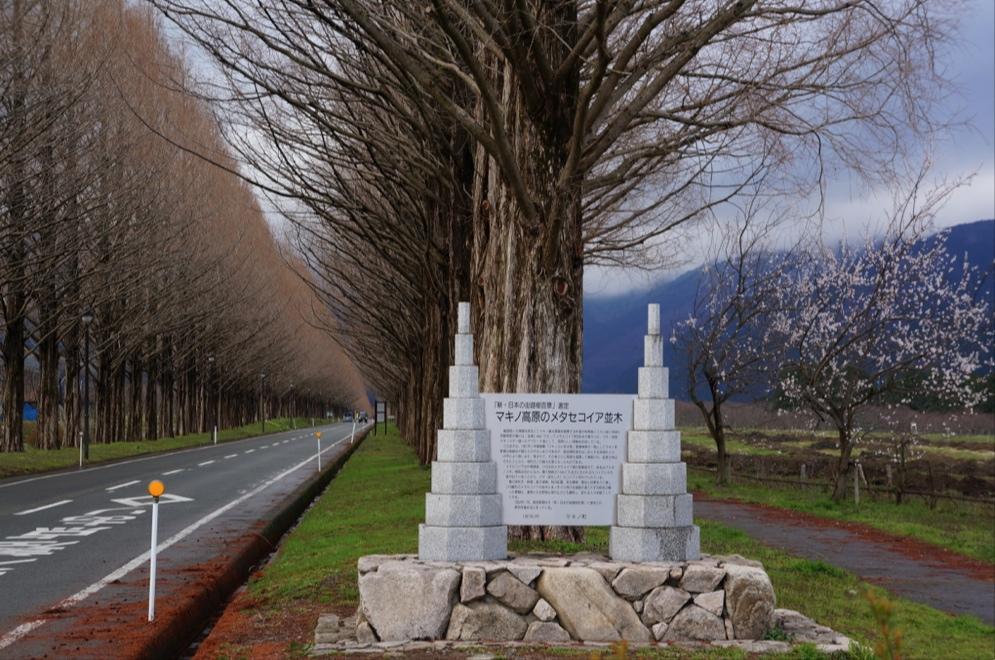 マキノ高原石碑